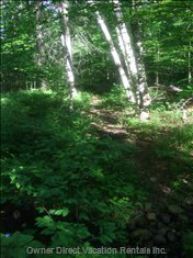 Walking Trail - this Walking Trail is on the Property. it is a 90 Second Walk from the House to the River, all on Private Property and Fairly Flat Easy Walking. 