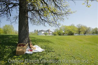 A Place for Picnic  - Mill around the Extensive Property, Lay under a Tree Enjoying Seasonal Goodies, Sing at the Top of your Lungs, Laugh, Cry, whatever your Heart Desires, you Are in a Private Mecca under a Big Sky.