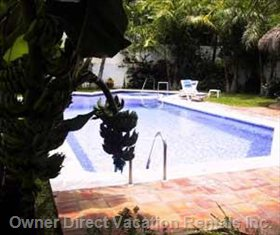 Beautifully Maintained Heated Pool & Spa - Bananas a Bonus!