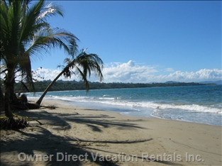Manzanillo Beach - a Perfect Place for a Half a Day Trip, Including a 30 Min Bike Ride, 2-3 Hours Jungle Hike, Lunch and Beach Time!