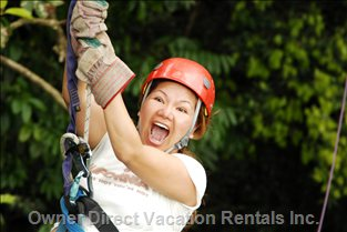 Exciting Canopy Zipline Tours