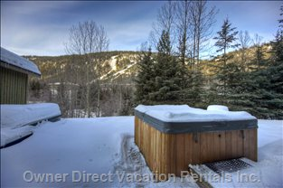 Hot Tub in the Snow - Shared with one Unit