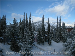 Ski-in/Ski-out Access - 1 Minute from the Front Door via the Driveway in the Bottom Right Hand Corner of this Picture. the Driveway Leads to the Top of the Silver Queen Chair.