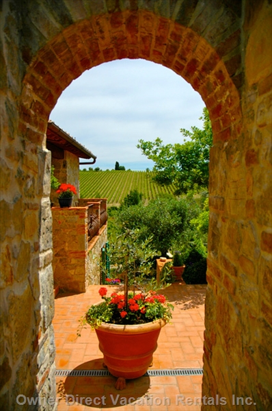 1500's stone farmhouse perfectly situated in the middle of olive groves and rolling Chianti classico vineyards