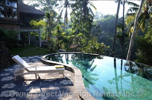 A tropical forest villa near Ubud