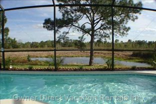 South Facing Pool -  Looking onto Pond and Conservation Lands