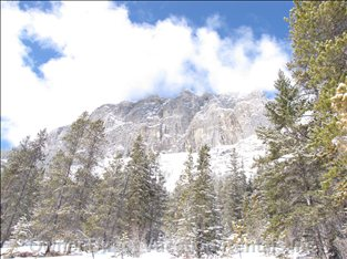 Grassi Lakes - the Grassi Lakes, a Beautiful Walk/Hike Only a 5 Minute Drive Away