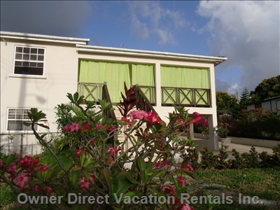 Welcome to Dee Dee Villa. Authentic Bajan Scenery, Natural Tropical Spaces, Gardens, all Set around a Lower Level Suite with Breezeway.