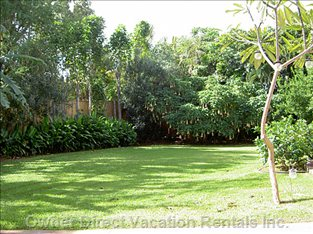 Private Garden - Spacious Garden Lush with Tropical Trees and Flowering Shrubs