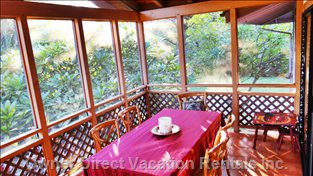 Screened-in Lanai - Perfect for Dining and Relaxing in Nature Amongst the Treetops!